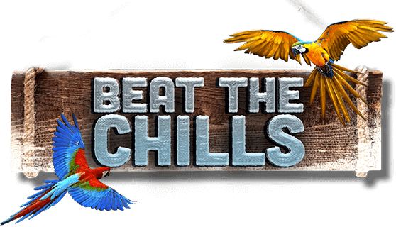 Beat the Chills Leaderboard